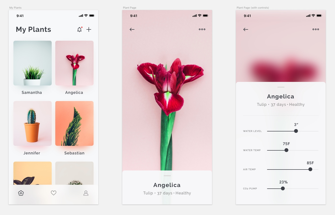 Plants App Concept - Here's a minimal plants app concept design by Vlad Fedoseyev